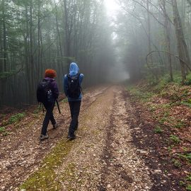 homeless teens walking on a trail in nevada county