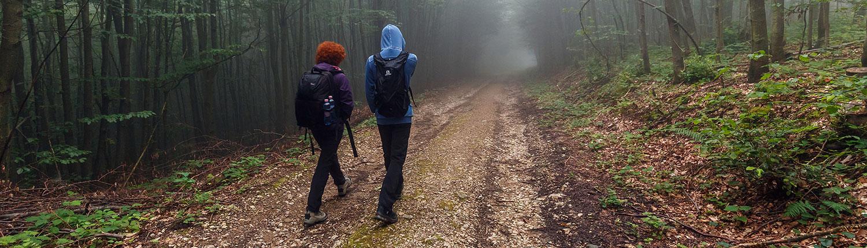 homeless teens walking in woods